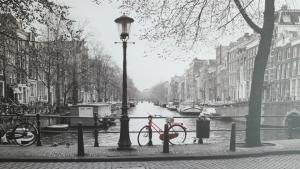 Verhuizing-verhuisservice-schilderij-ikea-amsterdam-